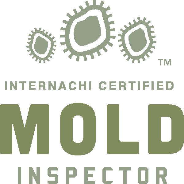 Boulder mold inspection near me